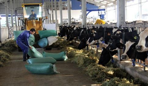 Sữa Mộc Châu về tay tư nhân với giá hơn 1.300 tỷ đồng
