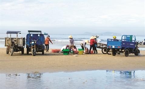 Kinh tế Việt Nam: Tăng trưởng có thực chất?