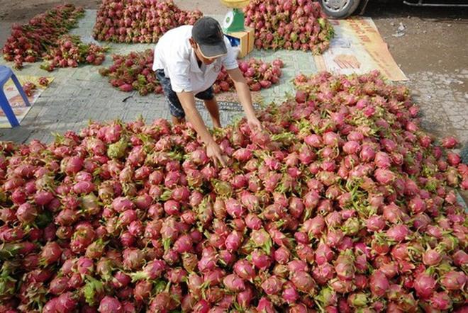 Việt Nam sẽ là ngôi sao sáng tại thị trường Mỹ