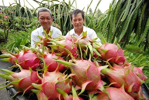 Tin Việt Nam - tin trong nước đọc nhanh sáng 15-07-2016