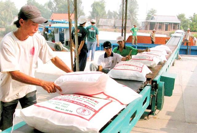 Xuất khẩu gạo và câu chuyện thị trường ngách