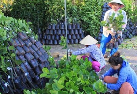 Tin Việt Nam - tin trong nước đọc nhanh 17-07-2016