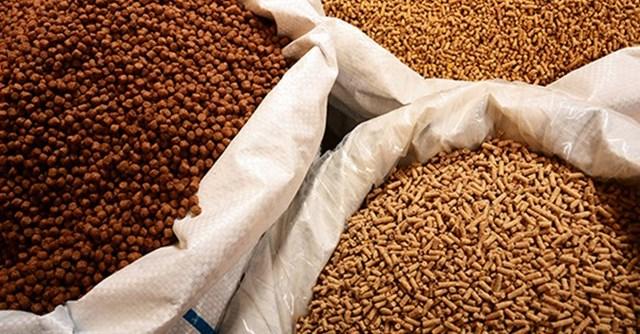 Nhập khẩu thức ăn chăn nuôi và nguyên liệu Việt Nam 5 tháng đầu năm 2019 tăng 0,28%