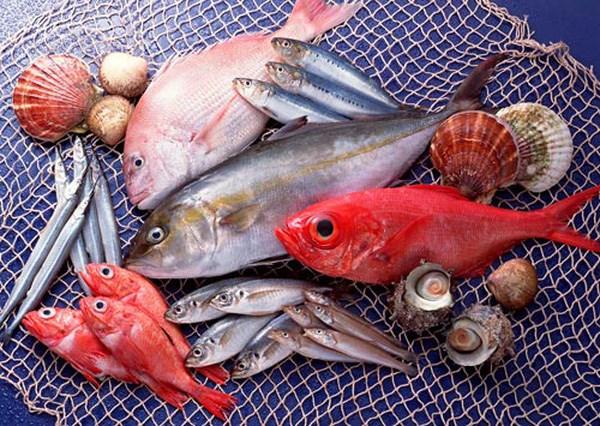 Nhập khẩu thủy sản vào Việt Nam tăng liên tiếp trong 3 tháng