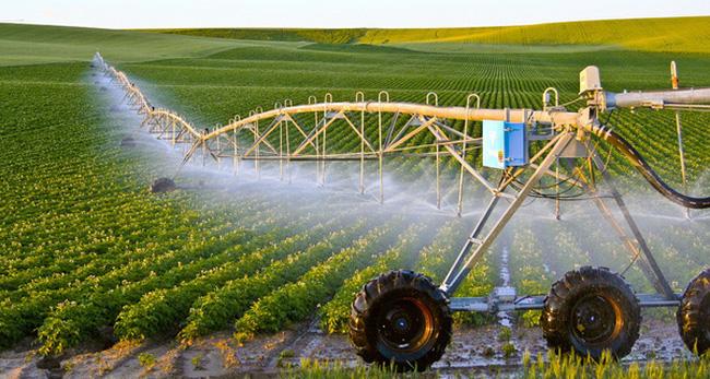 Phát triển nông nghiệp công nghệ cao: Cần giải quyết 5 vấn đề
