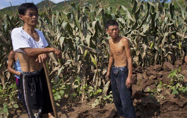 Liên Hợp Quốc hé lộ sự thật 'giật mình' ở Triều Tiên