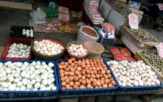 Nhìn từ chuyện quả trứng xuất khẩu