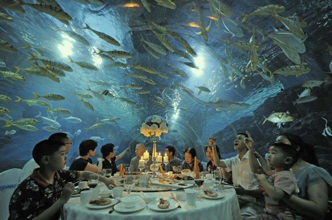 Biển Trung Quốc sắp hết cá