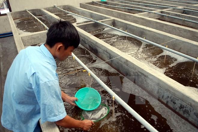 Tin Việt Nam - tin trong nước đọc nhanh chiều 08-07-2016