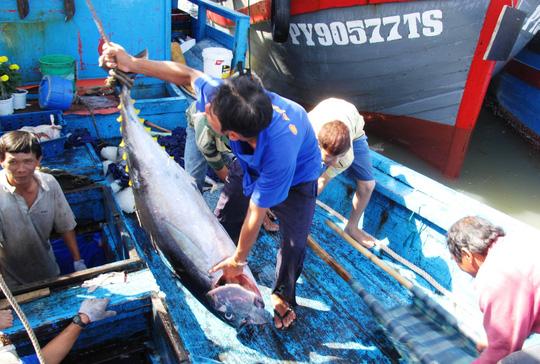 Tin tức tình hình Biển Đông sáng 14-09-2017: Ngư dân bám biển đến cùng, Quyết giữ ngư trường Hoàng Sa - Trường Sa