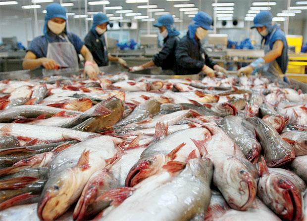 Úc tăng kiểm soát hàng thuỷ sản Việt Nam