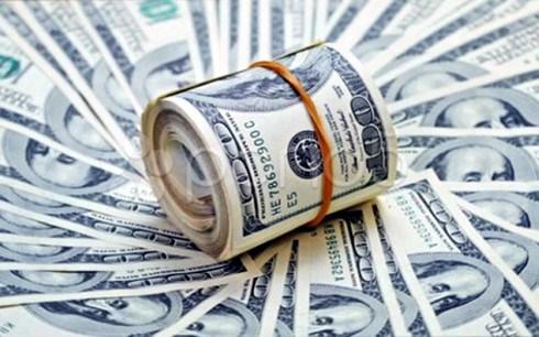 TS. Nguyễn Trí Hiếu: Cẩn trọng với thị trường ngoại hối