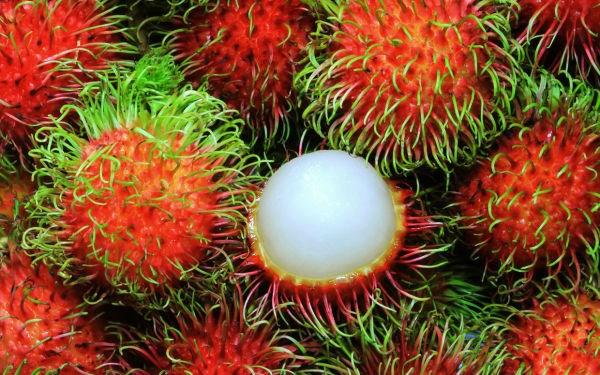 """Vượt nhiều """"cửa ải"""", trái cây Việt chinh phục hơn 40 quốc gia"""