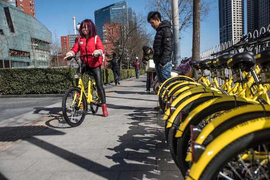 Cuộc chiến xe đạp tại Trung Quốc