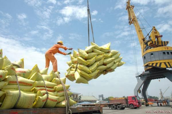 Giá gạo Việt Nam lạc nhịp với thế giới, khiến xuất khẩu khó khăn