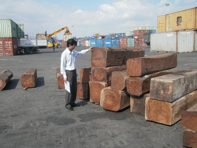 """""""Quyền trượng"""" FSC và lối ra cho ngành gỗ"""