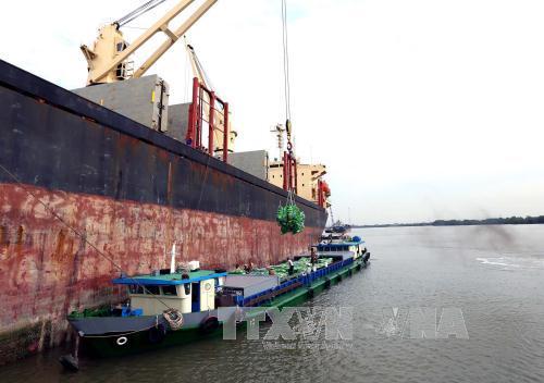 Kim ngạch xuất khẩu nông, lâm, thuỷ sản đạt 13,7 tỷ USD