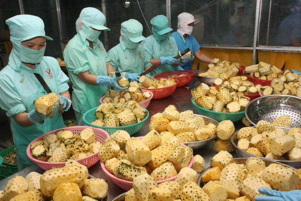 Thúc đẩy xuất khẩu hàng nông sản của Việt Nam sang thị trường Nga