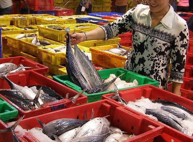 Xuất khẩu thủy sản tháng đầu năm 2019 tăng gần 11% so với cùng kỳ