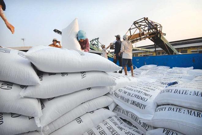 Quá lệ thuộc thị trường gạo Trung Quốc