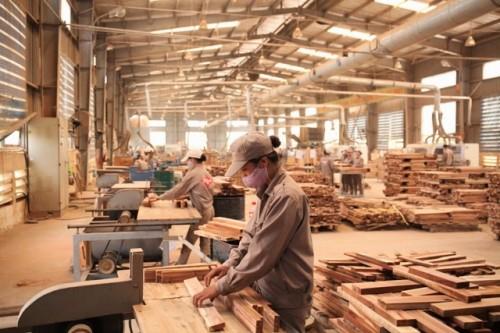Phát triển bền vững ngành công nghiệp chế biến gỗ phục vụ xuất khẩu